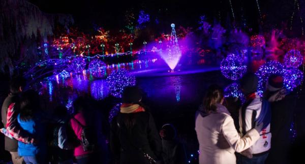 fest of lights